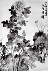 陈秋草的另幅《牡丹》作品