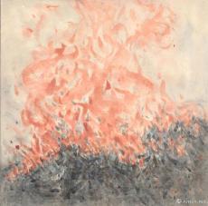 野火(六)Fire