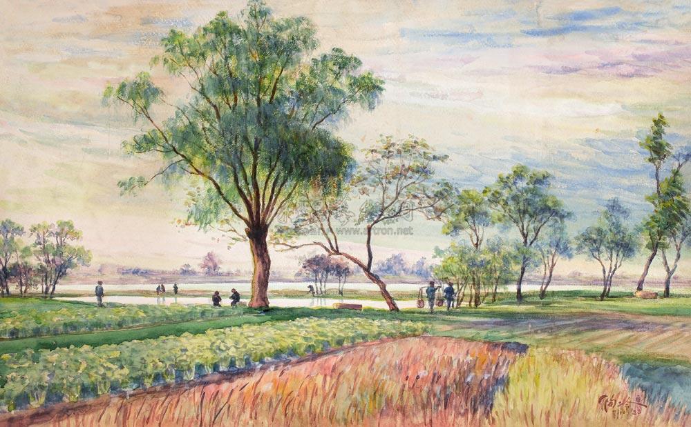 树木铅笔画