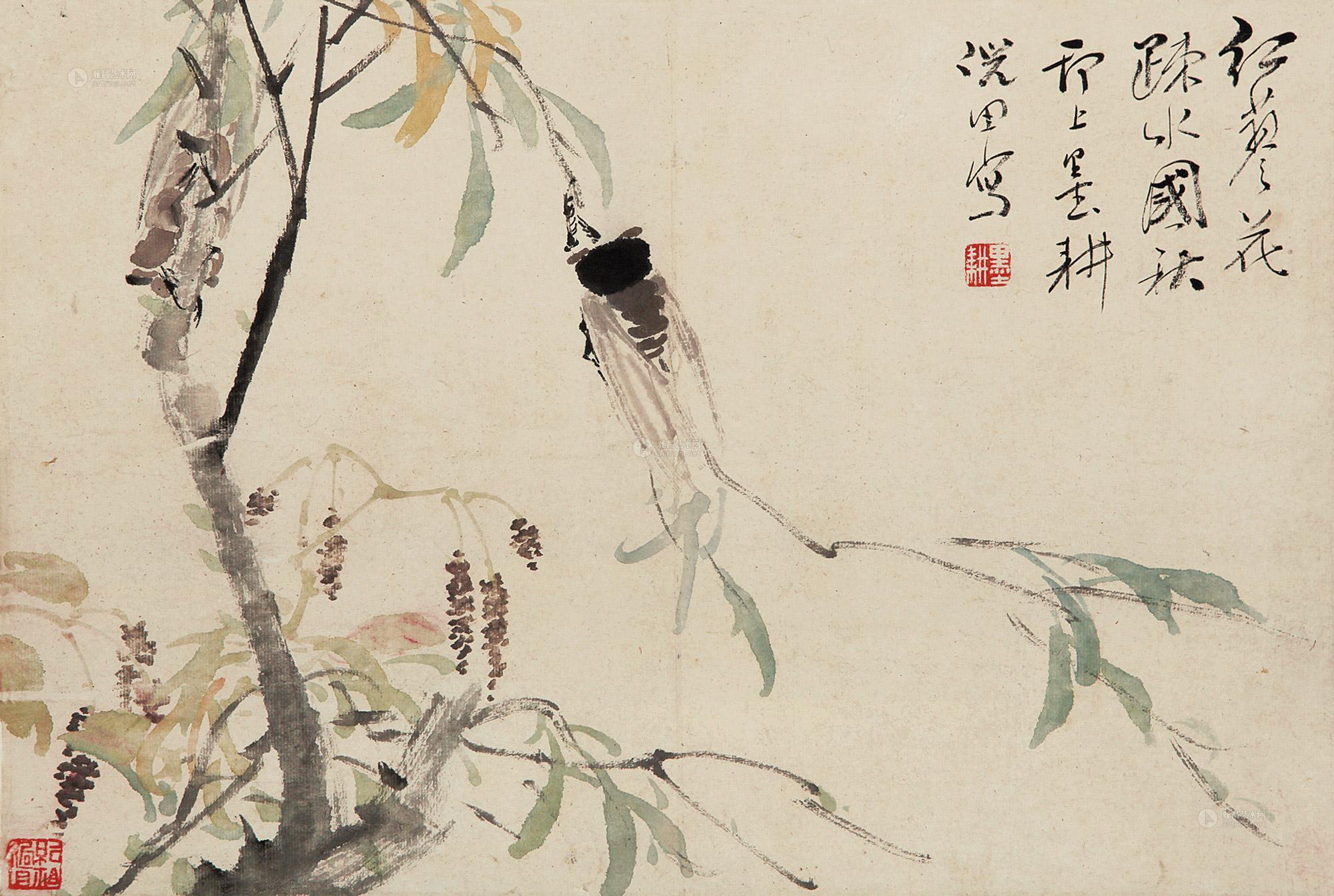 秋蝉 听泉简谱歌谱