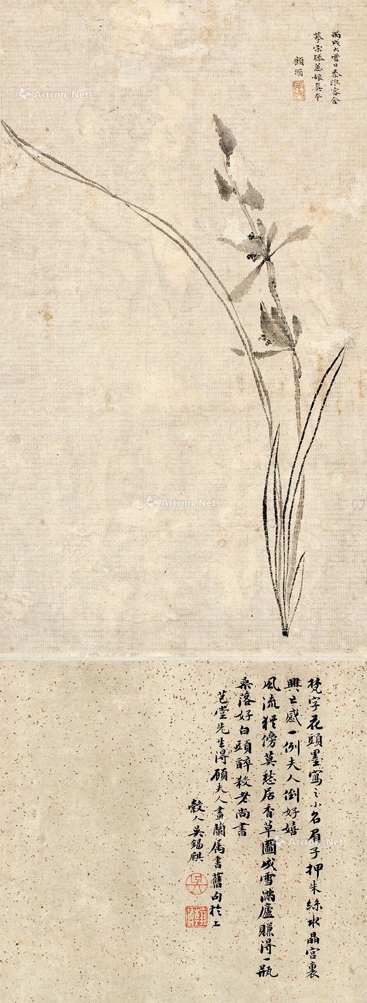 边框简笔画 古风兰花