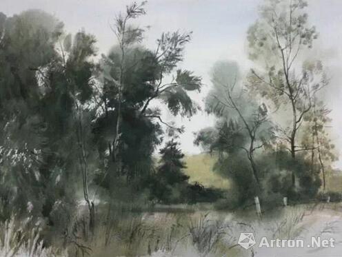 2014,小树林,46x38,孙志纯
