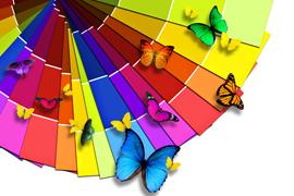 潘强31集:色面积色形状练习
