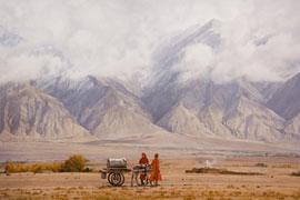 张义波:油画语言在写实绘画中的体现