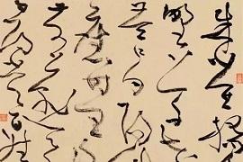 丁申阳:讲解各类草书作品