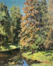 巴甫洛夫皇家公园的阳光