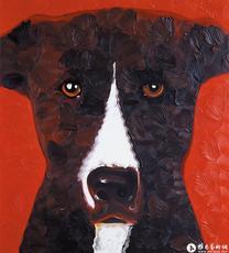 狗No.3^_^<br>Dog No.3