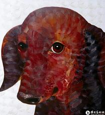 狗No.7^_^<br>Dog No.7