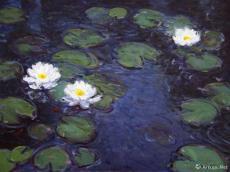 碧波莲香 Shining Waters with Lotus Scent
