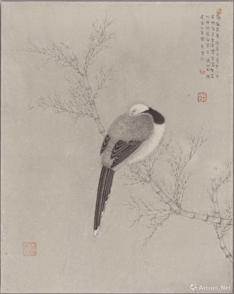 花鸟写生2