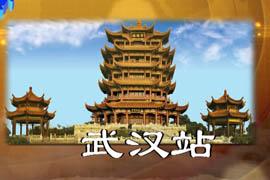 【收藏寻城记】武汉站:探寻武汉新兴收藏市场(一)