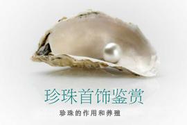 汪盈:珍珠首饰鉴赏——珍珠的作用和养殖