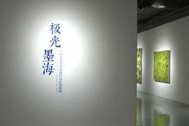 """【雅昌带你看展览第328期】""""极光墨海""""中国水墨艺术家暨作品赴南极展"""