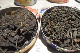 """栗强04集:""""红印""""与其他茶品的对比"""